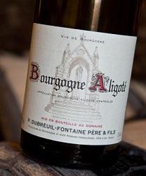 Bourgogne Aligoté – Dubreuil Fontaine 2013