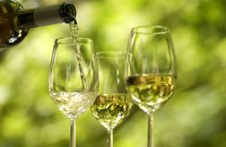 Tasting of Light & Refreshing Wines